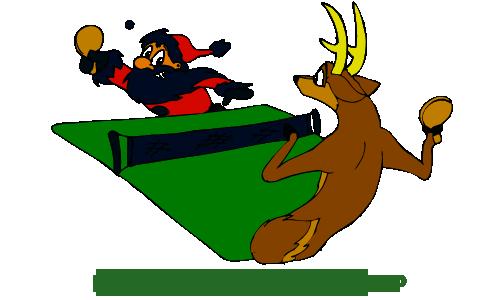 Рождественский турнир!